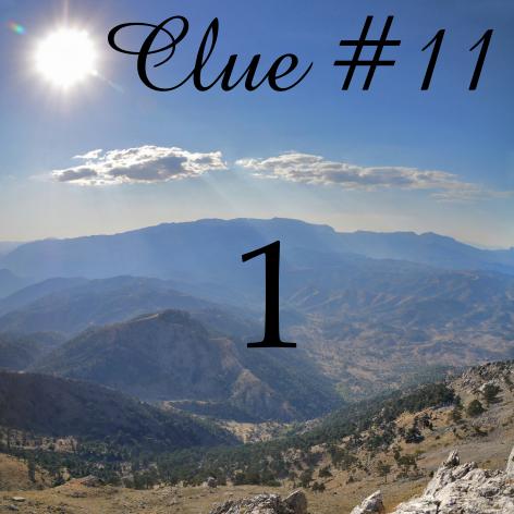 Clue 11