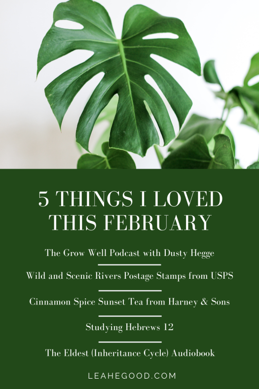 5 Things I Loved This February_Pin